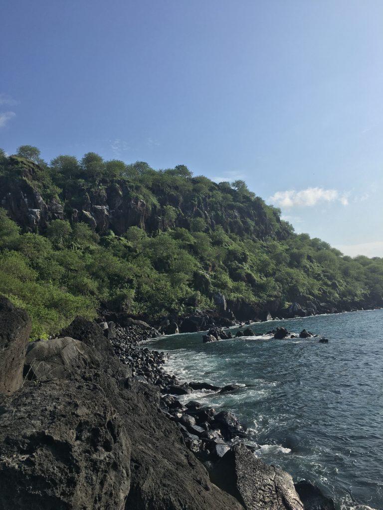 image of the coastline on San Cristobal island, lines with rocks and lush vegetation
