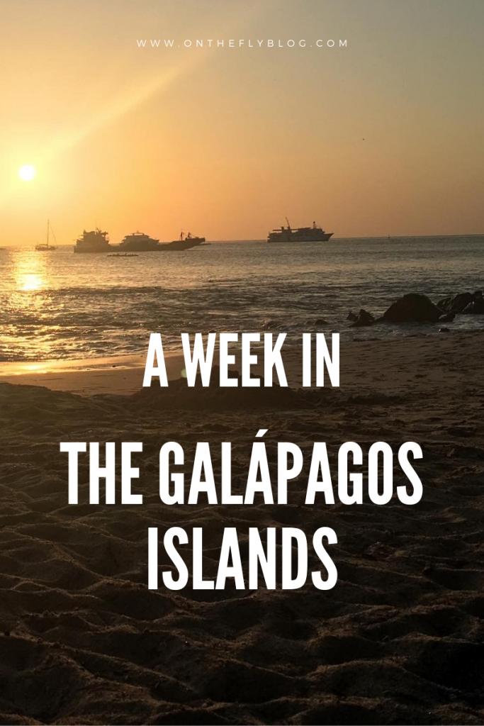 pin image of a Galapagos beach and sunset with the title the a week in the Galapagos islands