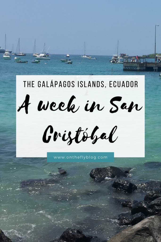 pin image of a Galapagos beach with the title the Galapagos islands, Ecuador: a week in san cristobal